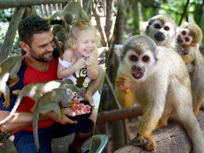 Monkey Jungle Sosua