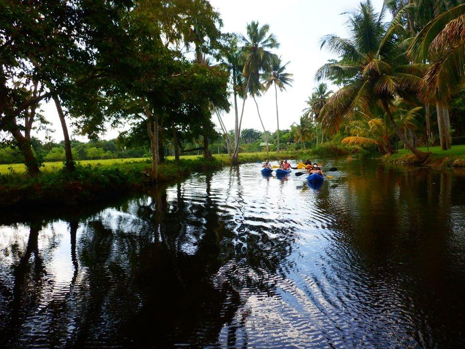 kayaking in the river cabarete