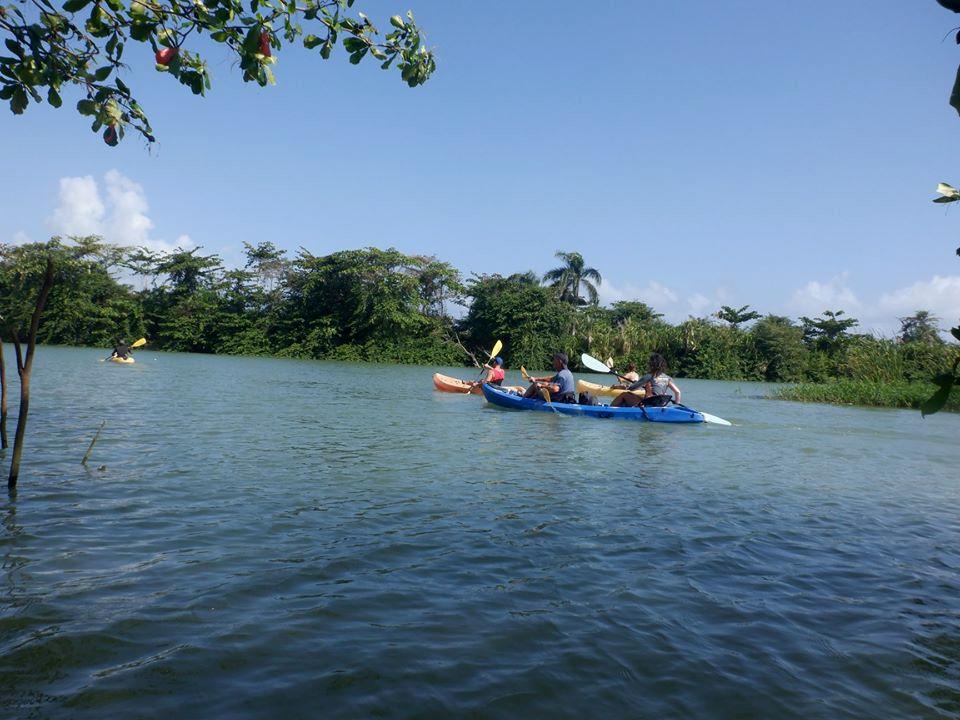 river kayak tour