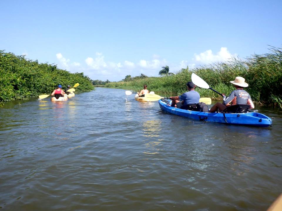 Cabarete kayaking in the river