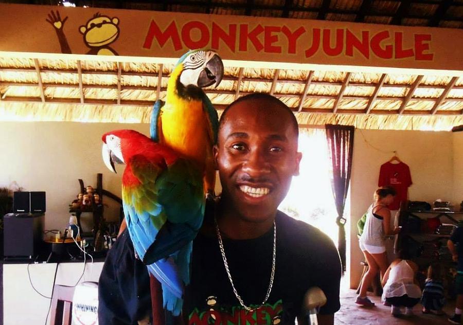 Exotic birds on a staff shoulder